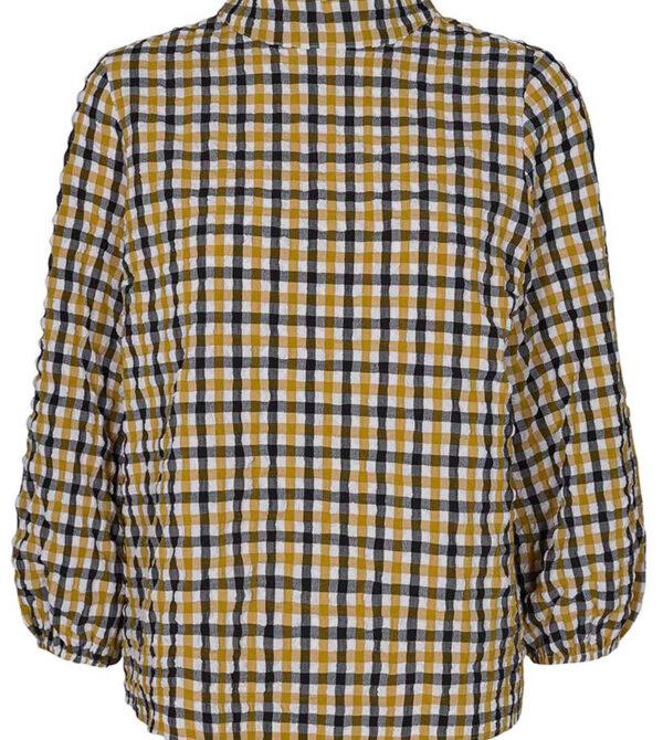 charlette check blouse